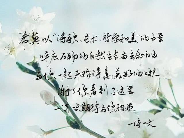 一个人时要坚强。泪水没肩膀依靠就昂头,没有谁比自己爱自己更实在了。