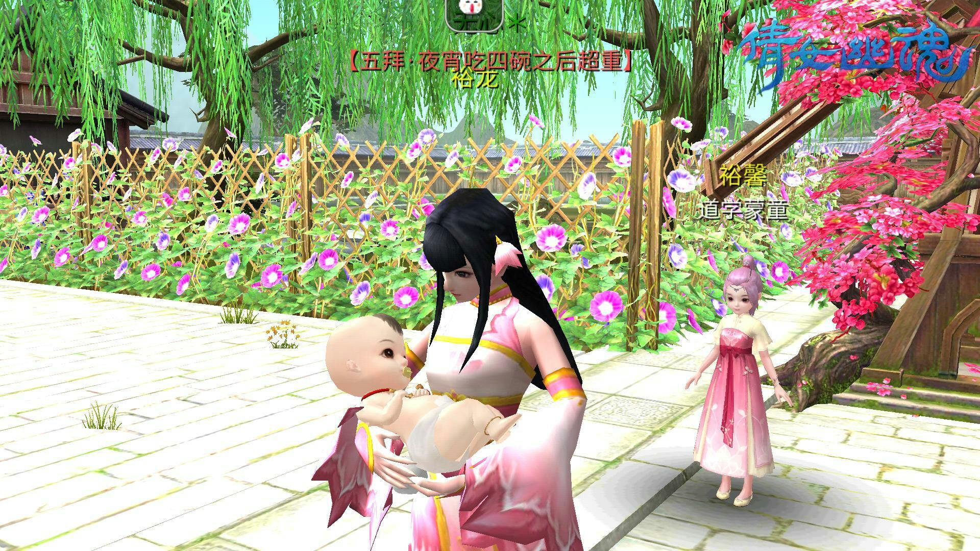 二宝出生了