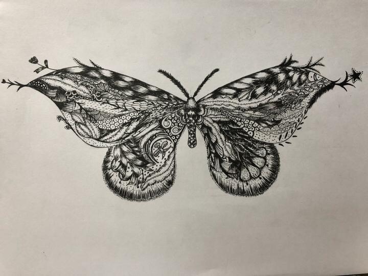 【同人组出品】这是一只藏着秘密的蝴蝶