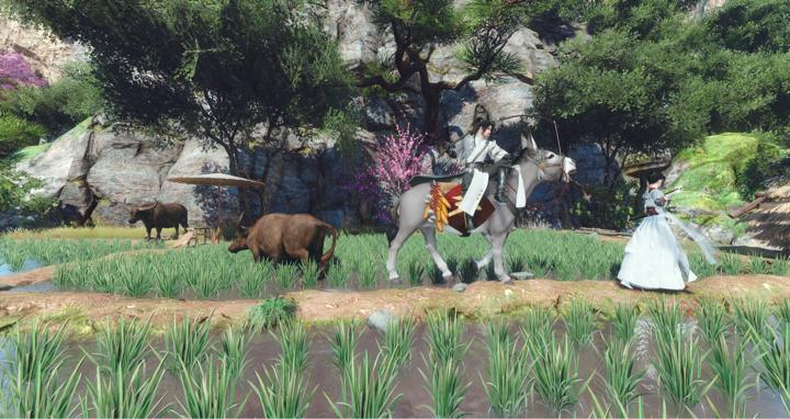 吃一发小毛驴安利~   我有一只小毛驴,带你溜达田野间
